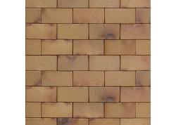 Klinkerinės grindinio trinkelės 0825 Antik